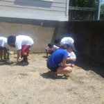WAMC Summer Enrichment Program - Hudson Highland's Nature Museum (Group 2) Field Trip