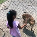 WAMC Students Visit Space Farms Zoo & Museum.
