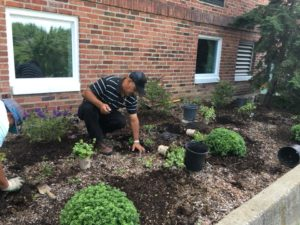 WAMC Summer Enrichment Program Parents Donate Time to Beautify Pine Island Elementary School building.