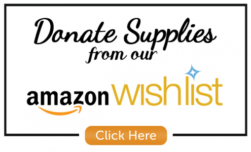 Donate Supplies from our Amazon Wishlist!