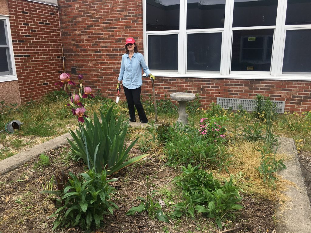 The WAMC Summer Program Garden Is Almost Ready!